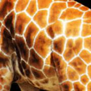 Skin Deep - Buy Giraffe Art Prints Art Print