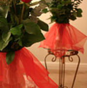 Skirted Roses In Mirror Art Print