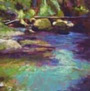 Skokomish River Art Print