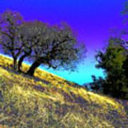 Sky Burning Blue Art Print
