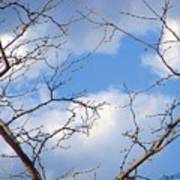 Look At The Blue Sky Art Print
