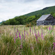 Slate Cabin In Wales Art Print