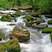 Slate Creek, Nez Perce National Forest, Idaho Art Print