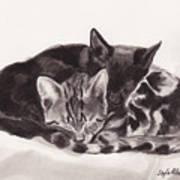 Sleeping Kittens Art Print