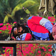 Sleeping Rasta-st Lucia Art Print