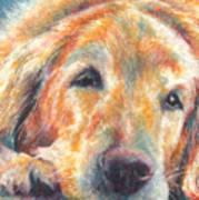 Sleepy Dog Art Print by Melissa J Szymanski