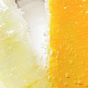 Slice Of Orange And Lemon In Cocktail Glass Art Print