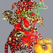 Slither Art Print