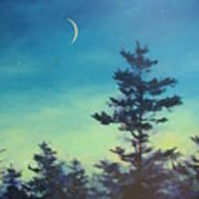 Sliver Moon And Pines Art Print