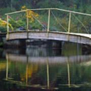 Small Bridge In Double Flowered Art Print