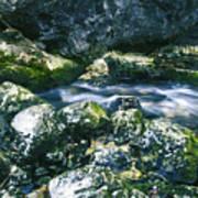 Small Freshwater Spring Under Rocks Art Print