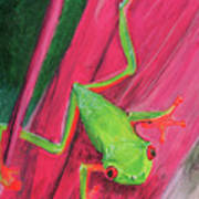Small Frog Art Print