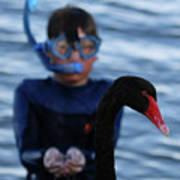 Small Human Meets Black Swan Art Print