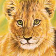 Small Lion Art Print