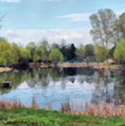 Small Pond In Tomilino Art Print