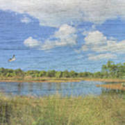 Small Pond With Weathered Wood Art Print
