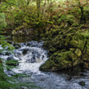 Small River Cascade Over Mossy Rocks In Northern Wales Art Print