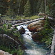 Small Stream In The Lost Wilderness 070810-1612 Art Print