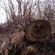 Smiley Log Art Print