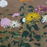 Smith's Giant Chrysanthemums Art Print