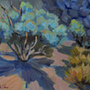 Smoke Tree In La Quinta Cove Art Print