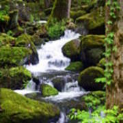 Smokey Mountain Stream Art Print