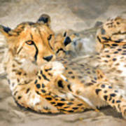 Smokin Cheetah Love Art Print