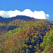 Smoky Mountain Scenery 6 Art Print