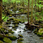 Smoky Mountain Stream 2 Art Print