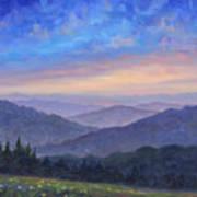 Smoky Mountain Wildflowers Art Print