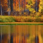 Snake River Fall Colors Art Print