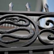 Snakes On A Gate Art Print