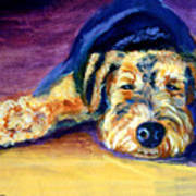 Snooze Airedale Terrier Art Print by Lyn Cook