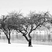 Snow Along The Schuylkill River Art Print