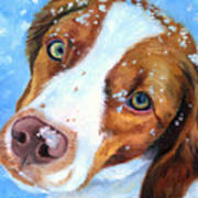 Snow Baby - Brittany Spaniel Art Print by Lyn Cook