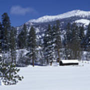 Snow Covered Trees And Cabin At Rock Art Print