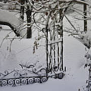 Snow Covered Wisteria Arch Art Print