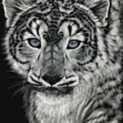 Snow Dragon Leopard Art Print