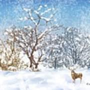 Snow Flurry Art Print by Arline Wagner