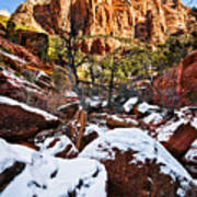Snow In The Canyons Art Print