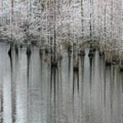 Snow On The Cypresses Art Print