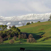 Snow On The Great Western Tiers, Tasmania Art Print