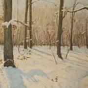 Snow On The Wood Art Print