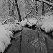 Snowy River Art Print