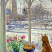 Snow Shadows And Cat Art Print