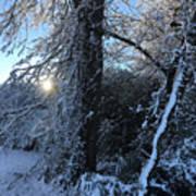 Snow Sunrise 2 Art Print