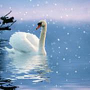 Snow Swan Swim Art Print