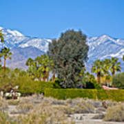 Snow-topped Mountains From Tahquitz Canyon Way In Palm Springs-california  Art Print