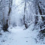 Snow Walk Art Print
