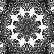 Snowflake 13 Art Print
